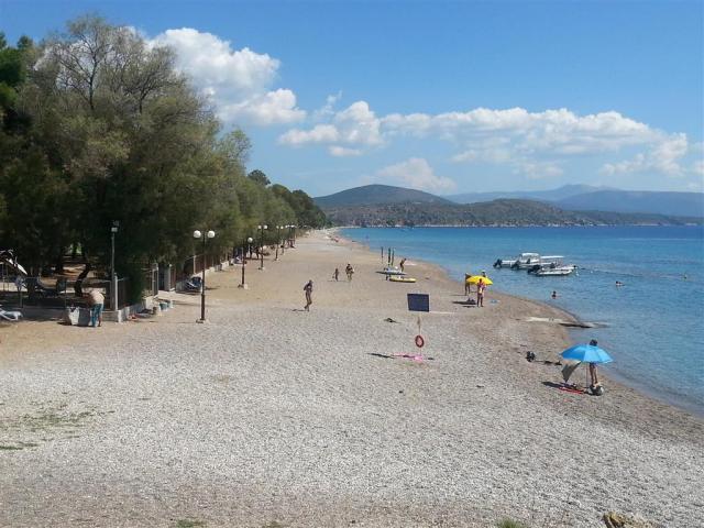 The Grove Seaside
