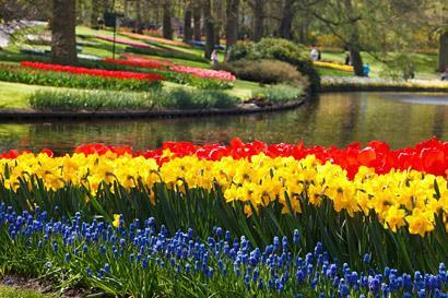 Flora Olomouc - výstava záhradkárov