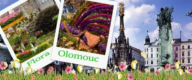Flóra Olomouc - výstava kvetov