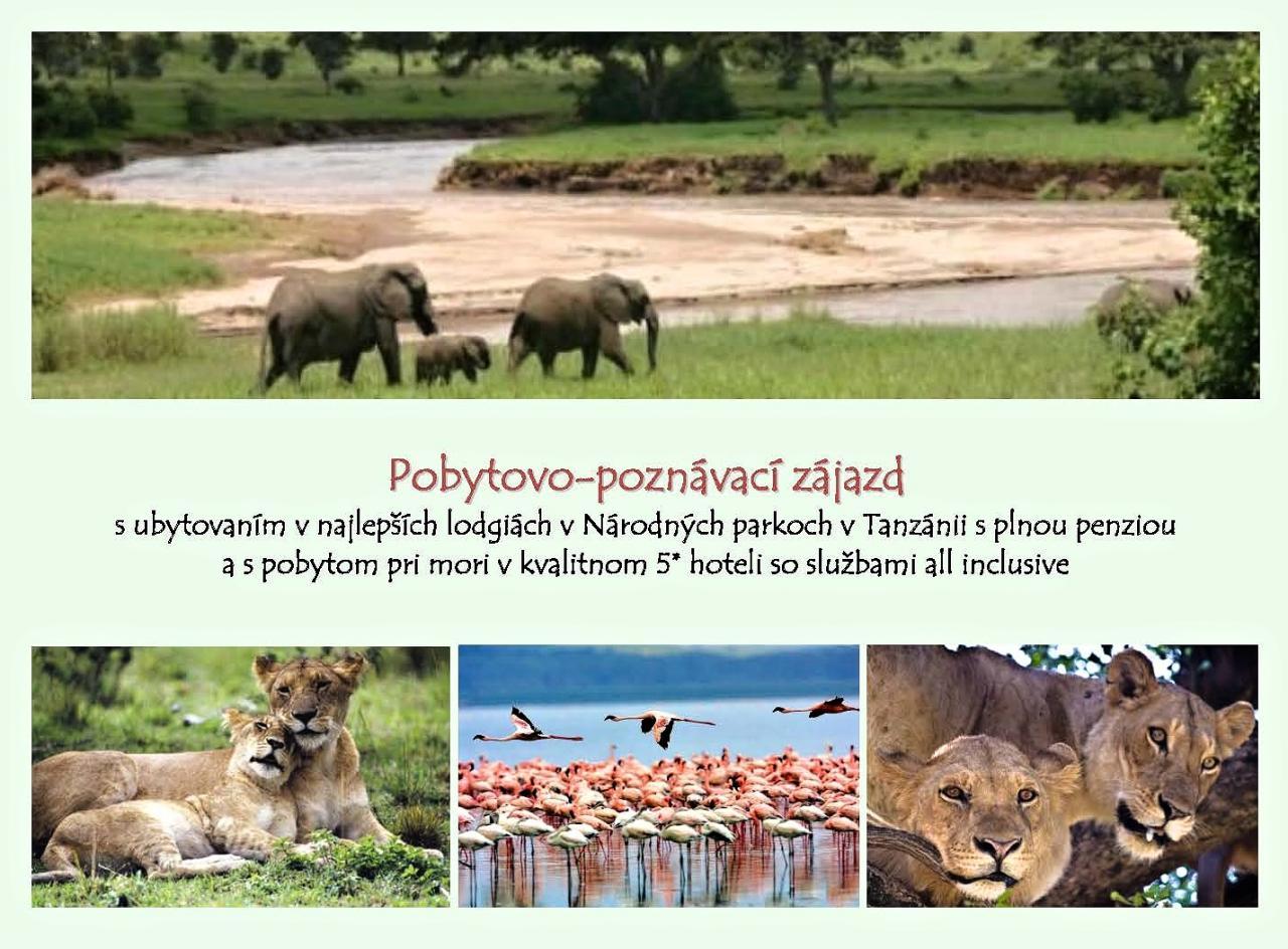 ZANZIBAR a TANZÁNIA - pobytovo-poznávací zájazd s dobrodružstvom na Safari