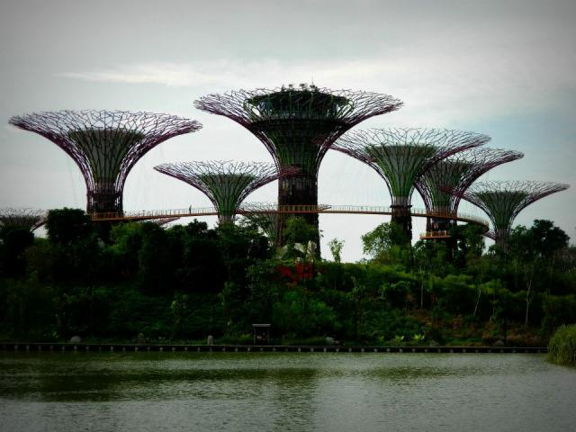 Malajsie + Singapur + Indonésie